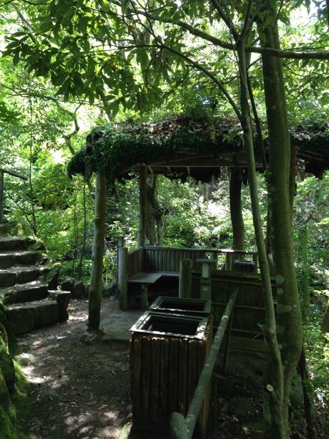 地元の万葉公園で森林浴
