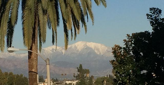LAのローカル山は雪景色4