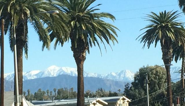 LAのローカル山は雪景色3